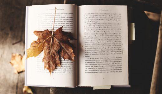 【書評】『ブログ飯 個性を収入に変える生き方』(染谷昌利著)はブログを始める前に読むべき本かもしれない